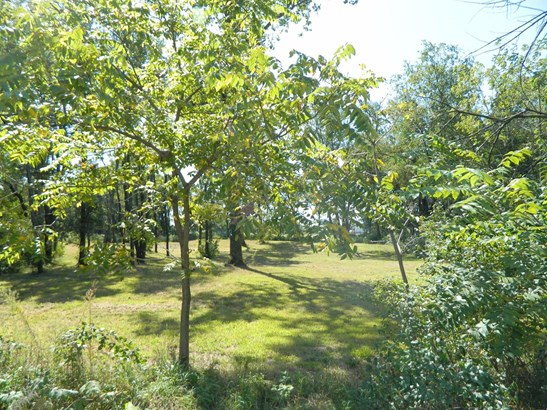 Vacant Land/Acreage - Fair Oaks, IN (photo 4)