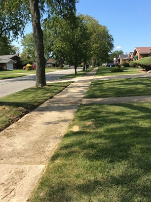 1 Story, Ranch - CHICAGO HEIGHTS, IL (photo 4)