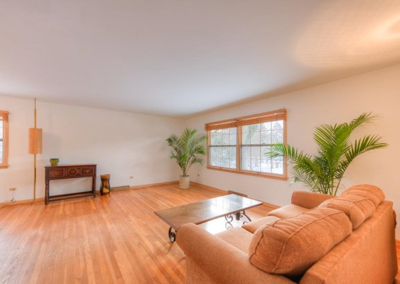 Ranch/1 Sty/Bungalow, Single Family Detach - Munster, IN (photo 4)
