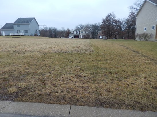 Land - LOWELL, IN (photo 1)