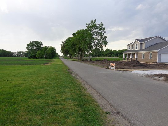 Vacant Land/Acreage - Rensselaer, IN (photo 2)