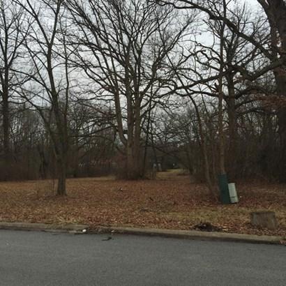 Land - PARK FOREST, IL (photo 1)