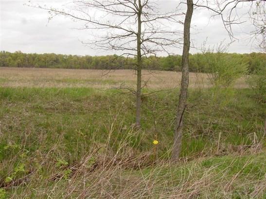 Ranch/1 Sty/Bungalow, Single Family Detach - Wheatfield, IN (photo 5)