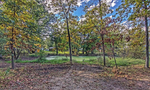 Vacant Land/Acreage - Cedar Lake, IN (photo 3)