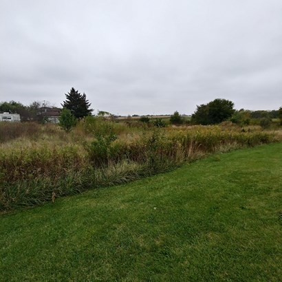 Land - BEECHER, IL (photo 3)
