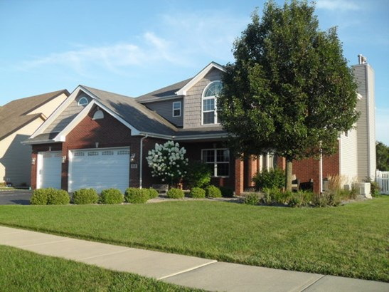 2 Stories, Contemporary - BEECHER, IL (photo 2)