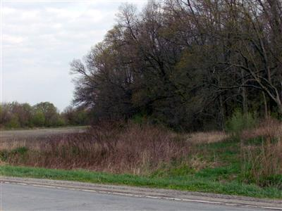 Vacant Land/Acreage - Hebron, IN (photo 2)