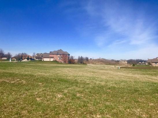 Land - MONEE, IL (photo 4)