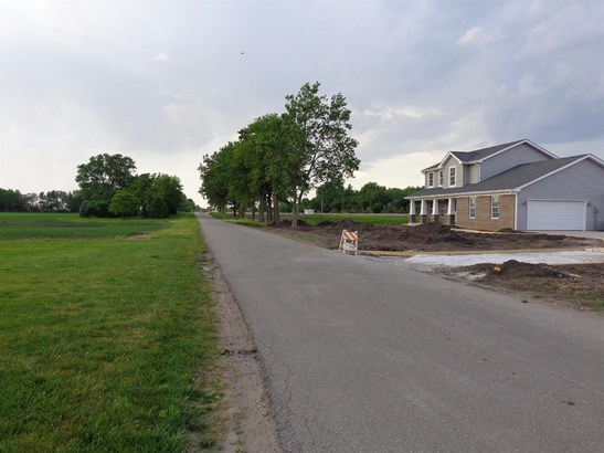 Vacant Land/Acreage - Rensselaer, IN (photo 3)