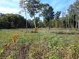 Vacant Land/Acreage - DeMotte, IN (photo 1)