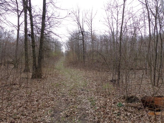 Vacant Land/Acreage - DeMotte, IN (photo 3)