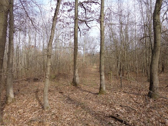 Vacant Land/Acreage - DeMotte, IN (photo 4)