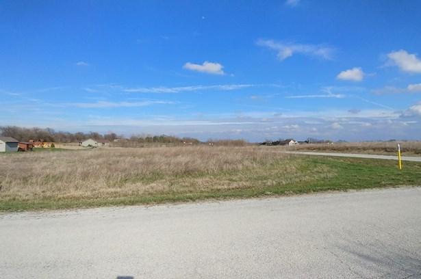 Land - GRANT PARK, IL (photo 2)