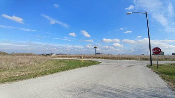 Land - GRANT PARK, IL (photo 3)