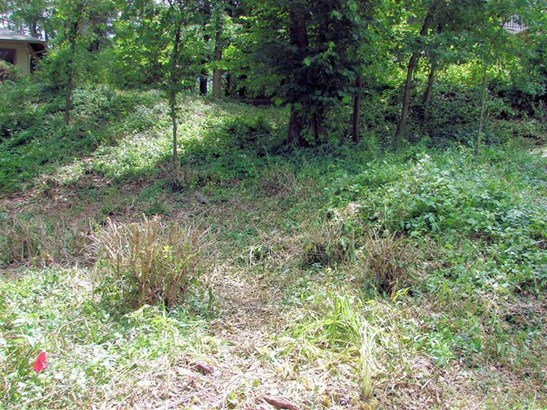 Vacant Land/Acreage - Ogden Dunes, IN (photo 1)
