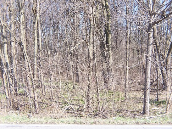 Vacant Land/Acreage - Porter, IN (photo 3)