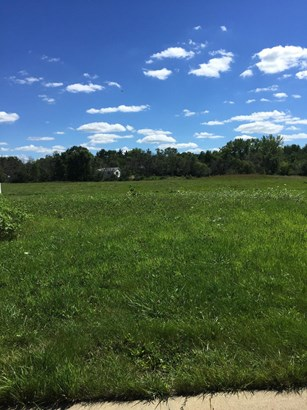 Vacant Land/Acreage - Dyer, IN (photo 1)