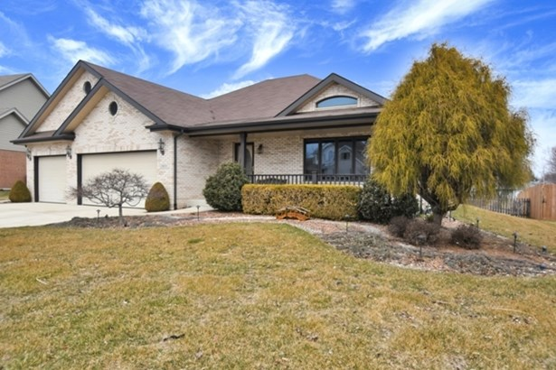 1 Story, Step Ranch - NEW LENOX, IL (photo 2)