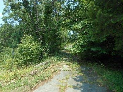 Vacant Land/Acreage - Ogden Dunes, IN