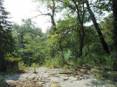 Vacant Land/Acreage - Ogden Dunes, IN (photo 2)