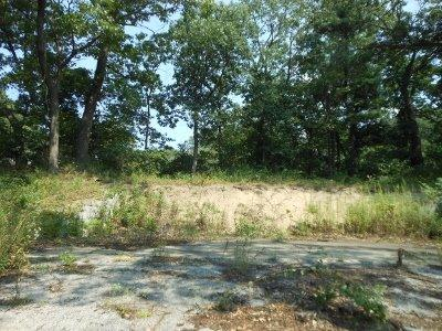Vacant Land/Acreage - Ogden Dunes, IN (photo 3)