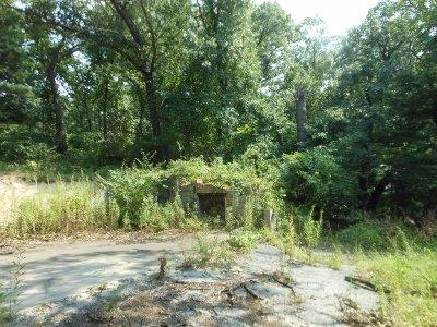 Vacant Land/Acreage - Ogden Dunes, IN (photo 4)