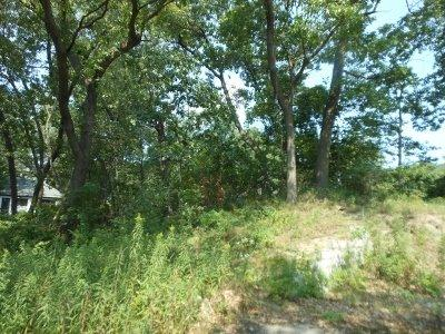 Vacant Land/Acreage - Ogden Dunes, IN (photo 5)