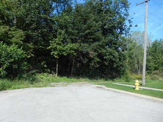 Vacant Land/Acreage - Lowell, IN (photo 3)
