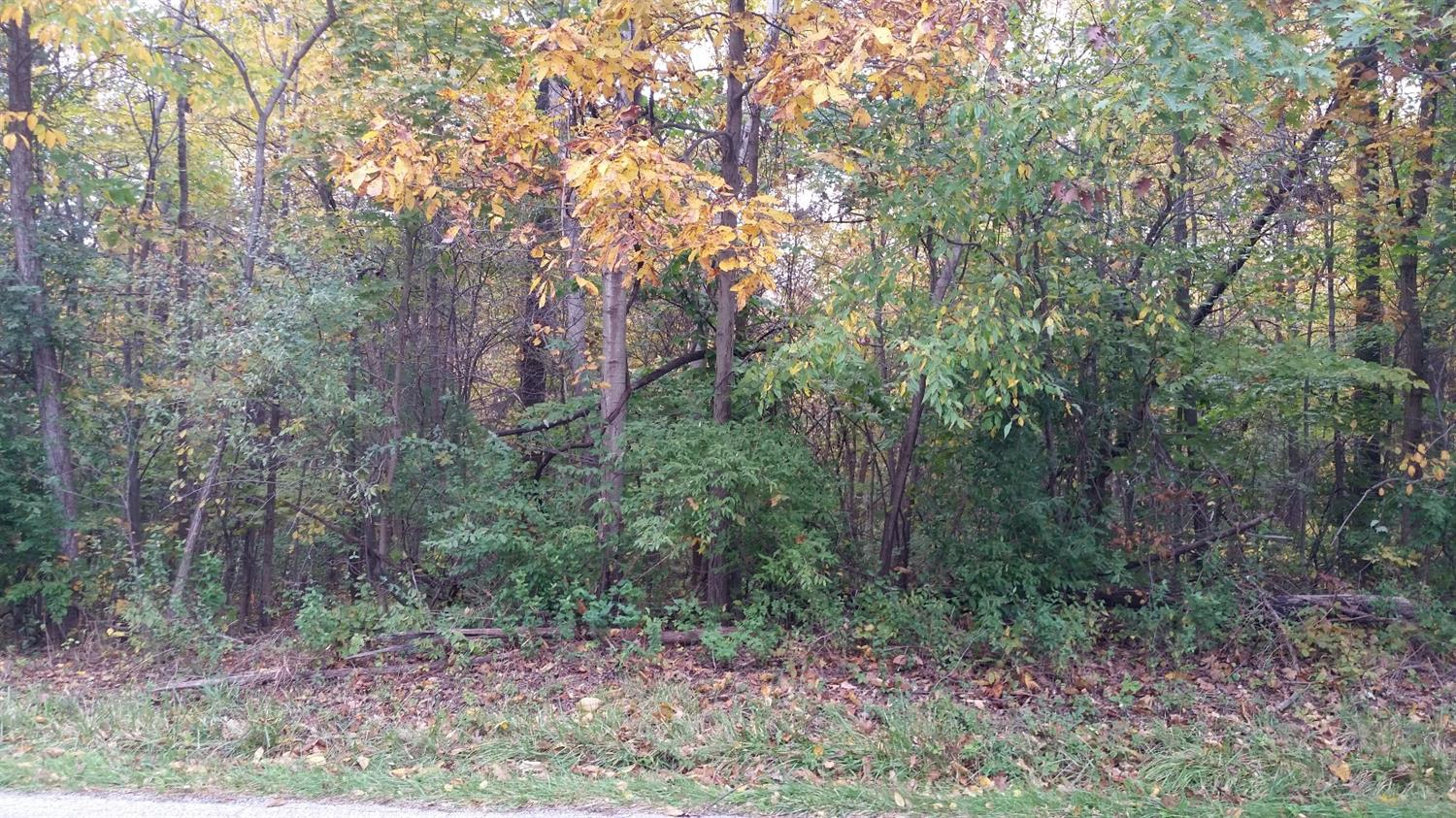 Vacant Land/Acreage - Westville, IN (photo 3)