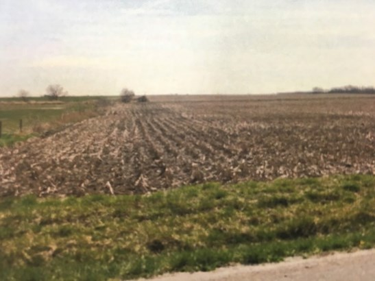 Land - FRANKFORT, IL (photo 1)