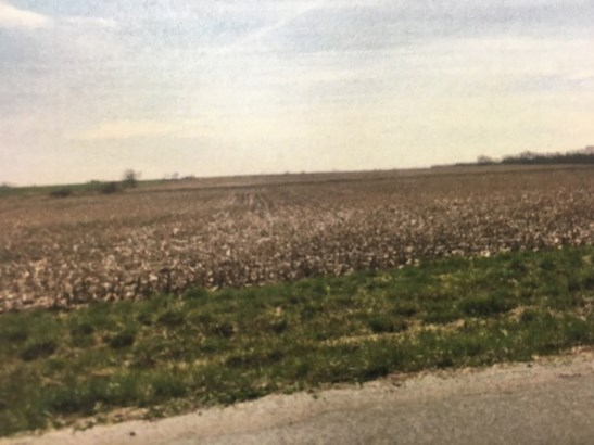 Land - FRANKFORT, IL (photo 3)