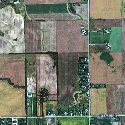 Grain - BEECHER, IL (photo 1)