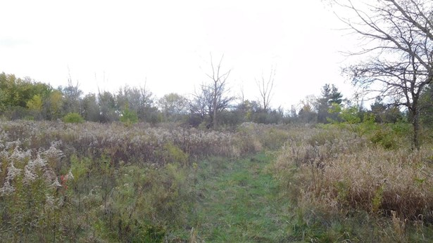 Vacant Land/Acreage - Hobart, IN (photo 3)