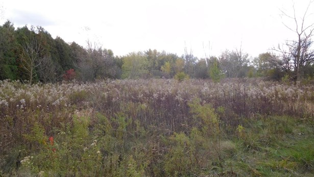 Vacant Land/Acreage - Hobart, IN (photo 4)