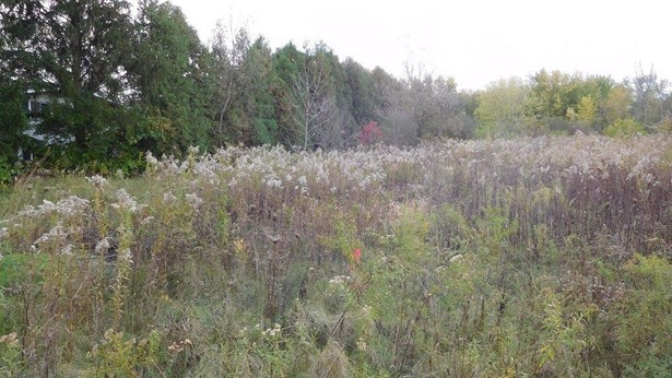 Vacant Land/Acreage - Hobart, IN (photo 5)