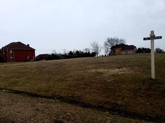 Land - MONEE, IL (photo 3)