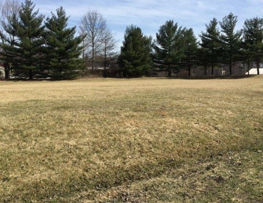 Vacant Land/Acreage - Westville, IN (photo 2)