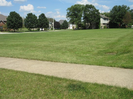 Land - BEECHER, IL (photo 5)