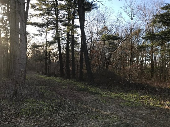 Vacant Land/Acreage - Knox, IN (photo 3)