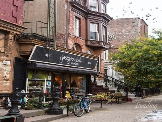 556 Halsey Street, Brooklyn, NY - USA (photo 2)