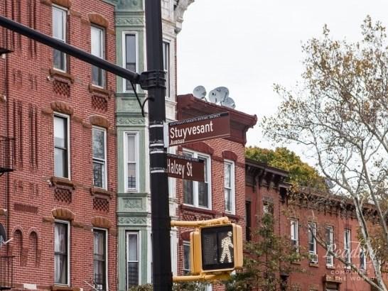 556 Halsey Street, Brooklyn, NY - USA (photo 3)
