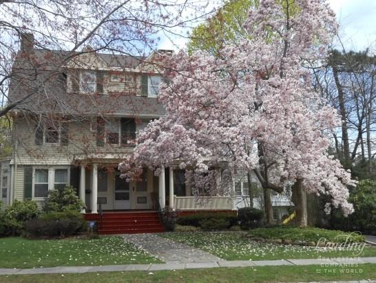 31 Clinton Avenue, Montclair, NJ - USA (photo 1)