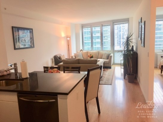 Summer Rental With A View 1817, Long Island City, NY - USA (photo 2)