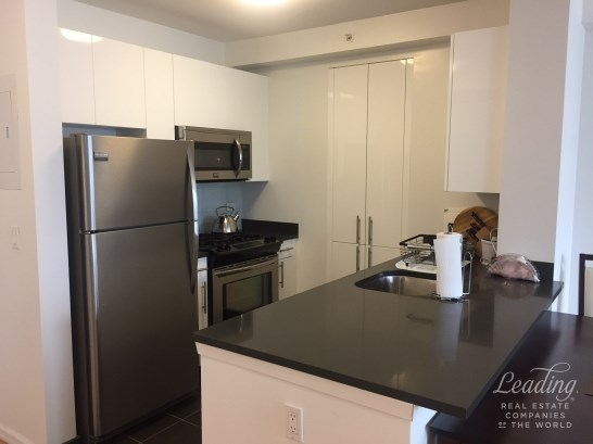 Summer Rental With A View 1817, Long Island City, NY - USA (photo 3)