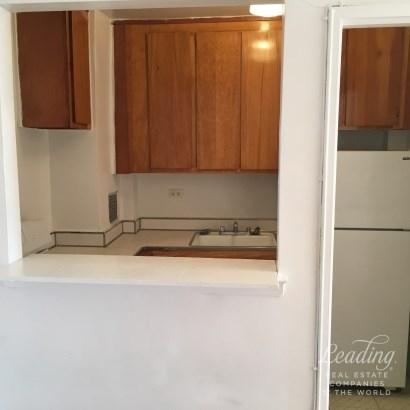 Spacious, Sunny, Affordable In Bay Ridge 6e, Bay Ridge, NY - USA (photo 4)