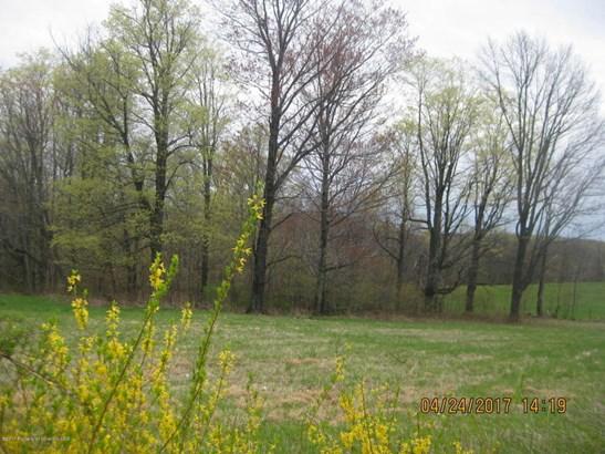 Lots and Land - Dalton, PA (photo 1)