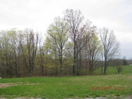 Lots and Land - Dalton, PA (photo 2)