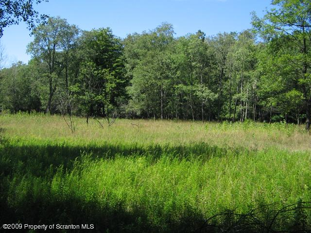 Lots and Land - Gouldsboro, PA (photo 2)