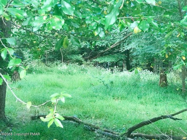Raw Land - Scotrun, PA (photo 2)