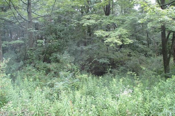 Lots and Land - Waverly, PA (photo 1)
